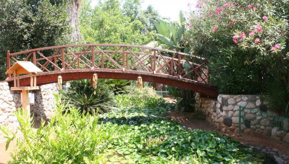 גשר החממה הטרופית בגן הבוטני